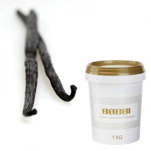 IJspasta vaniglia extra 3kg
